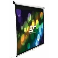 Elite Screens M119XWS1
