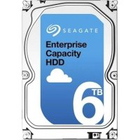 Seagate Enterprise Capacity 6Tb ST6000NM0095